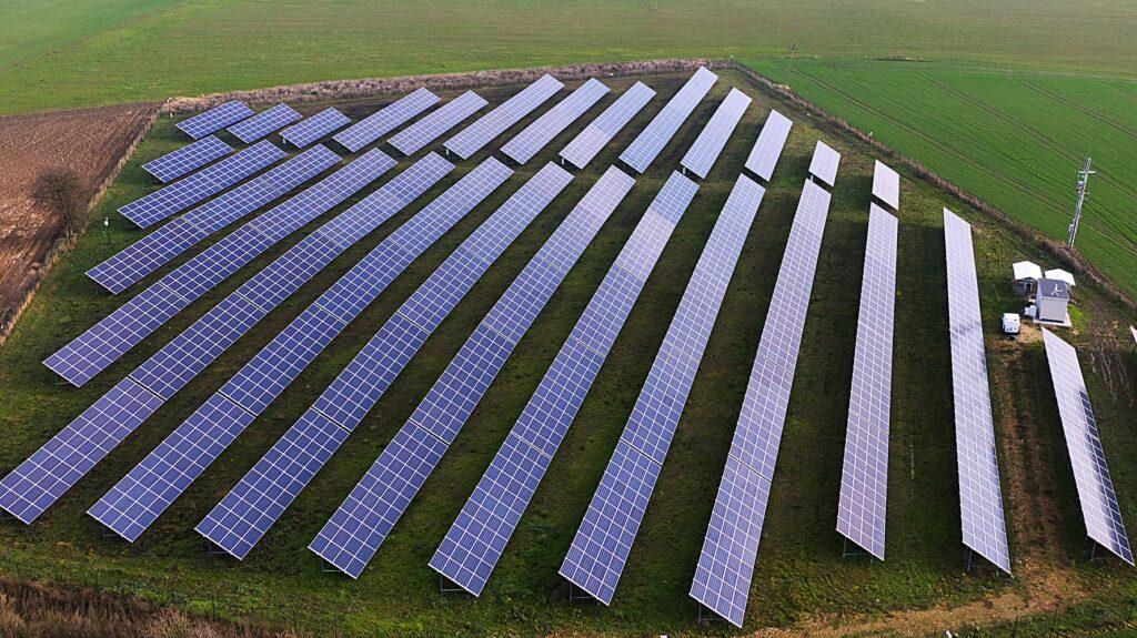 Łaszczewiec na polach elektrowni słonecznej