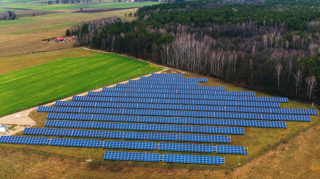 Uziębły na polach elektrowni słonecznej