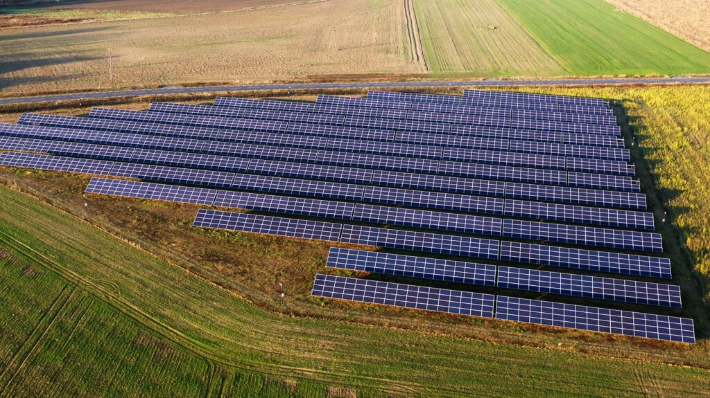 Zimnica na polach elektrowni słonecznej